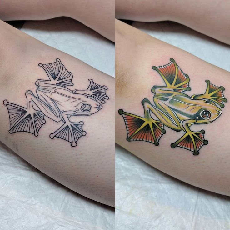 65 best Best Tree Frog Tattoo Design Ideas images on Pinterest ...