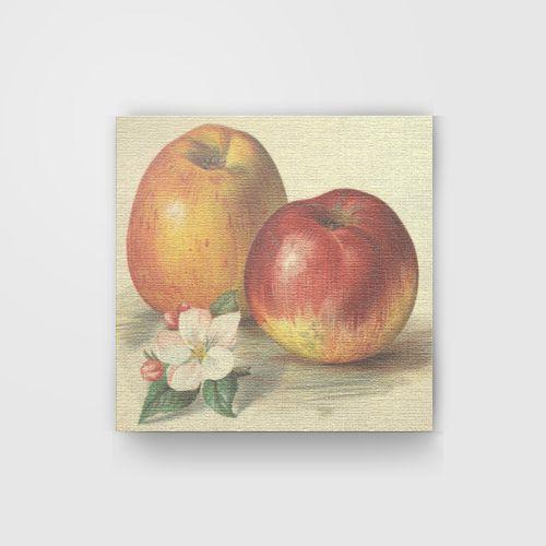 Apples dari Tees.co.id oleh teoPrasetya Online Store