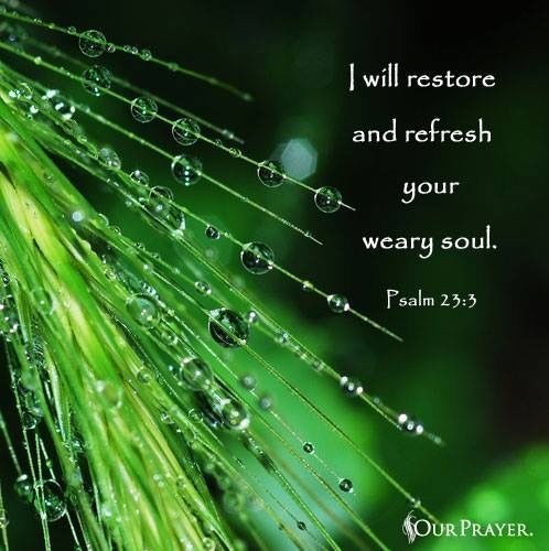 He restores my soul. He leads me in paths of righteousness for his name's sake. (Psalm 23:3 ESV)