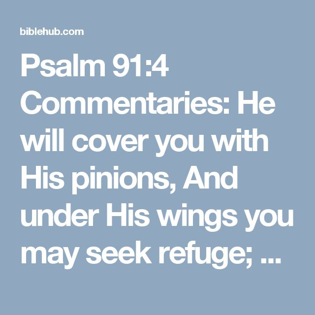 Psalm 91:4 Commentaries: He will cover you with His pinions, And under His wings you may seek refuge; His faithfulness is a shield and bulwark.
