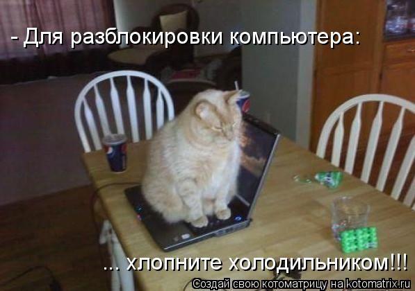 - Для разблокировки компьютера: ... хлопните холодильником!!!...