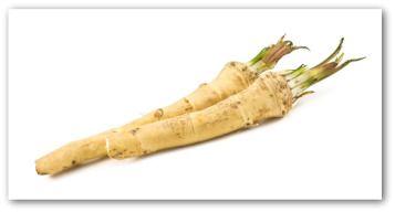 Growing Horseradish, Planting Horseradish, How to Grow Horseradish