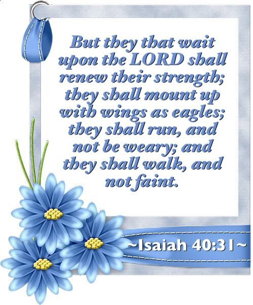 But they that wait upon the LORD shall renew their strength; they shall mount up with wings as eagles; they shall run, and not be weary; and they shall walk, and not faint. ~Isaiah 40:31~ KJV she