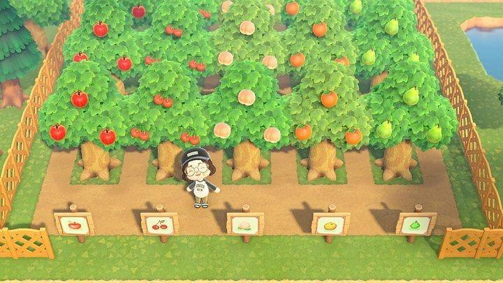 Acnh Inspiration On Instagram Cute Orchard Tumblr Fairiecrossing Animalcrossing Acnh N Animal Crossing 3ds Animal Crossing Animal Crossing Game