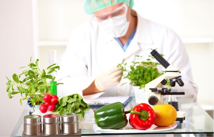 Canada strengthening food inspection policies alimento