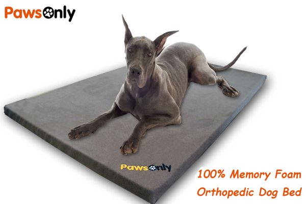Extra Large Grey Comfort Memory Foam Dog Bed