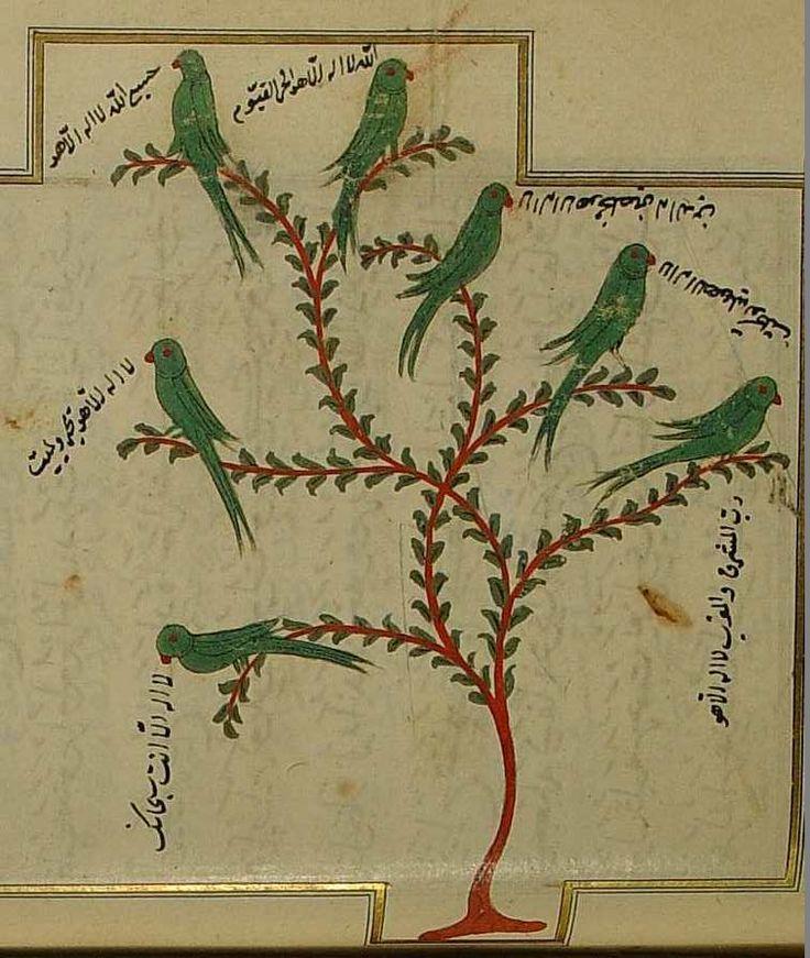Şifau'l-Esrar'dan bir sayfa