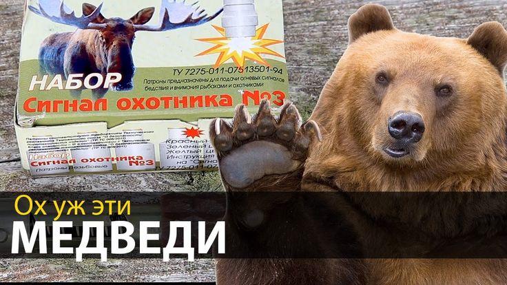 Ох уж эти медведи | Случай в походе | Приключения на байдарке