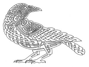 Knotted Raven 72