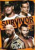 WWE: Survivor Series 2013 [DVD] [Eng/Spa] [2013]