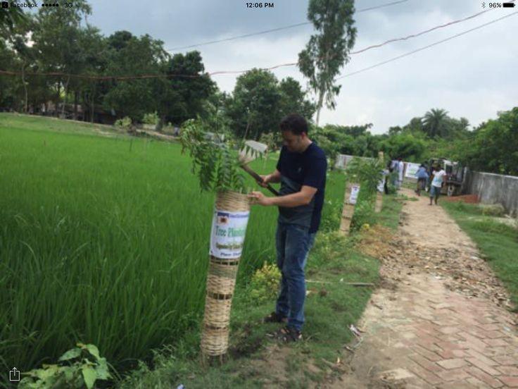 Dhaka Shamoli #LionsClub (Bangladesh) planted 300 trees along a road