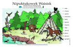 Mi'kmaq Talking Posters: All sorts of posters teaching the Mi'kmaq language - animals, family members, counting, colours and more. Great for us visual learners. (Interactive posters here: http://www.firstnationhelp.com/ali/posters/ with audio pronunciation. Great for us audible learners!)