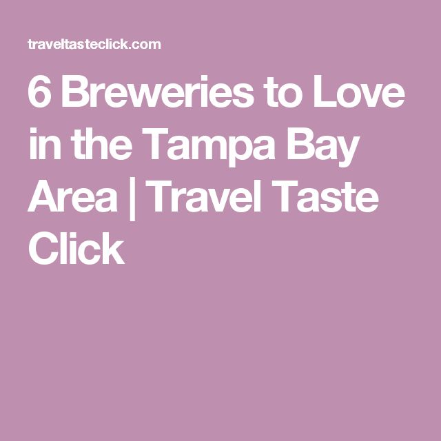 6 Breweries to Love in the Tampa Bay Area | Travel Taste Click