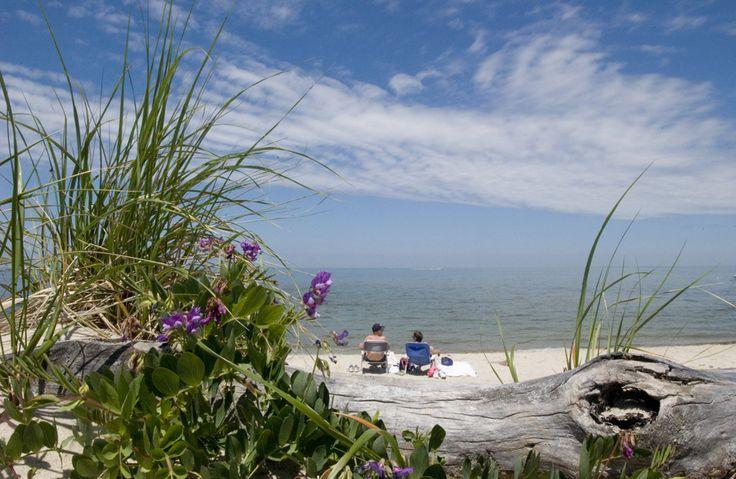 Breakwater Beach - Cape Cod Online