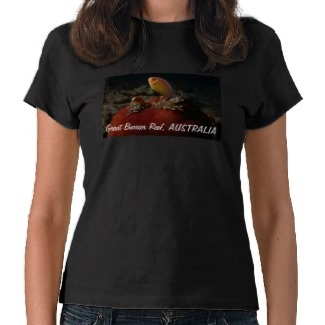 Women's T Shirt with pair of cute clownfish in a ball anemone