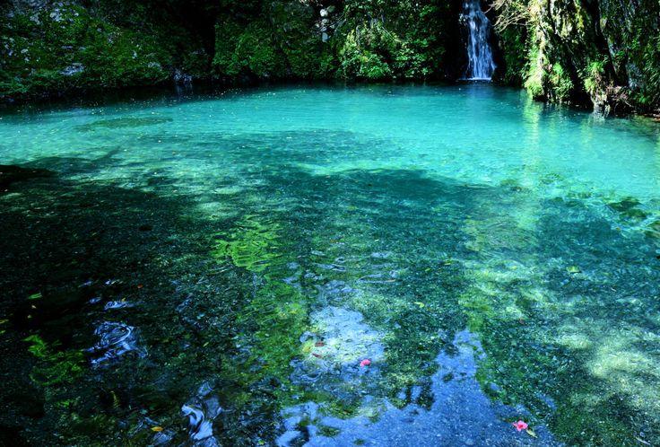 カメラマンに大好評!日本一美しい川「仁淀川」