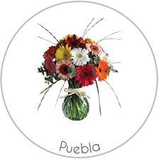 Home page Envio de Flores a Domicilio | envio de flores