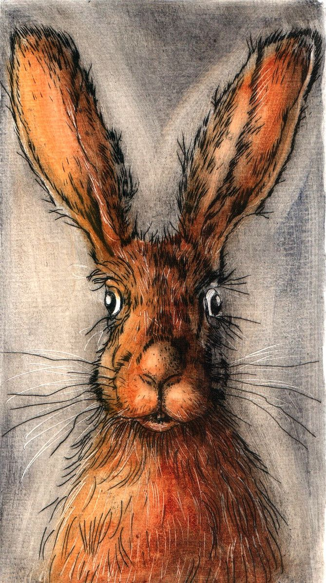 Картинки, смешные нарисованные кролики картинки