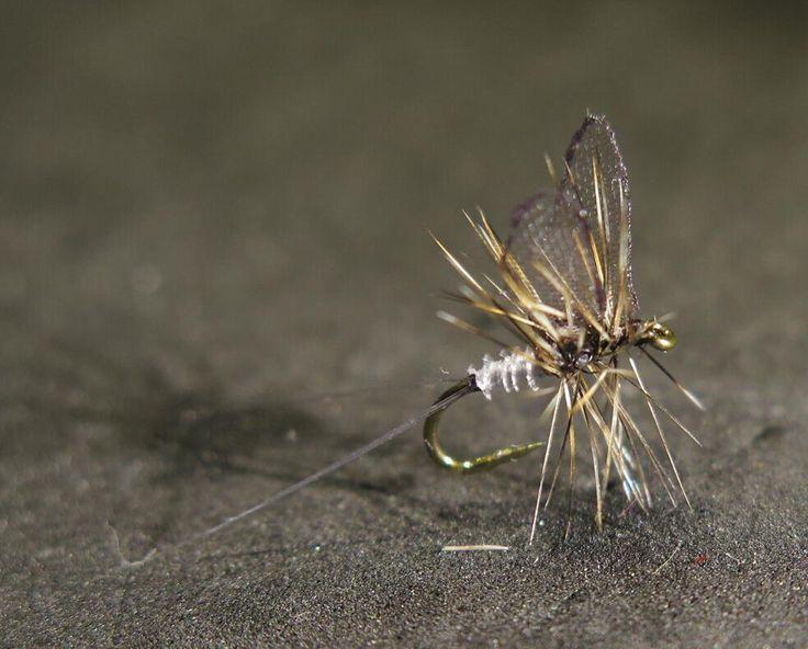"45 Likes, 1 Comments - Erik Lång (@pereriklang) on Instagram: ""Size 18 dun cree for them fish. #graylingfood #graylingfly #grayling #troutfood #troutfly #trout…"""