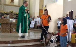 """""""O Grito do Bicho"""": Padre recebe cães abandonados para incentivar adoç..."""