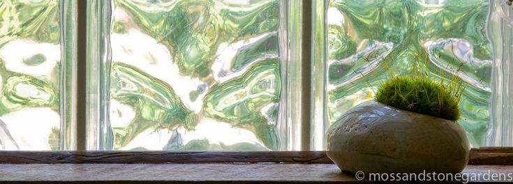 The new moss rocks from David Spain: Window Sill