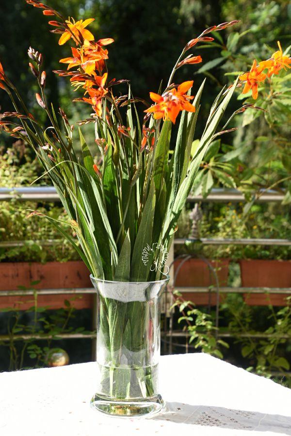 40 besten Blumendeko Bilder auf Pinterest   Brauch in, Pfingstrosen ...