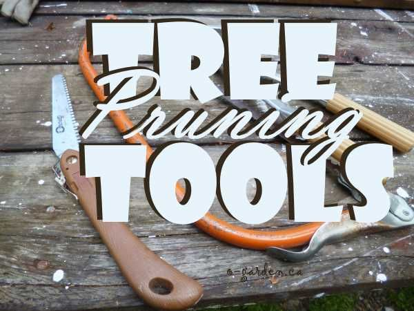 Tree Pruning Tools - sharp is better