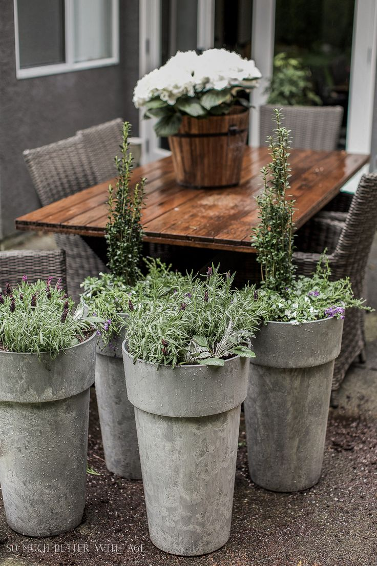 best  large outdoor planters ideas on pinterest  big planters  - outdoor extravaganza link party large outdoor planterspotted