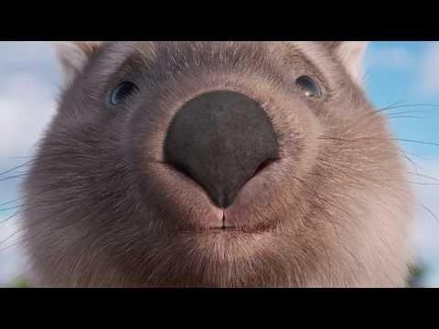 Meet Ernie, the Return and Earn wombat! - YouTube