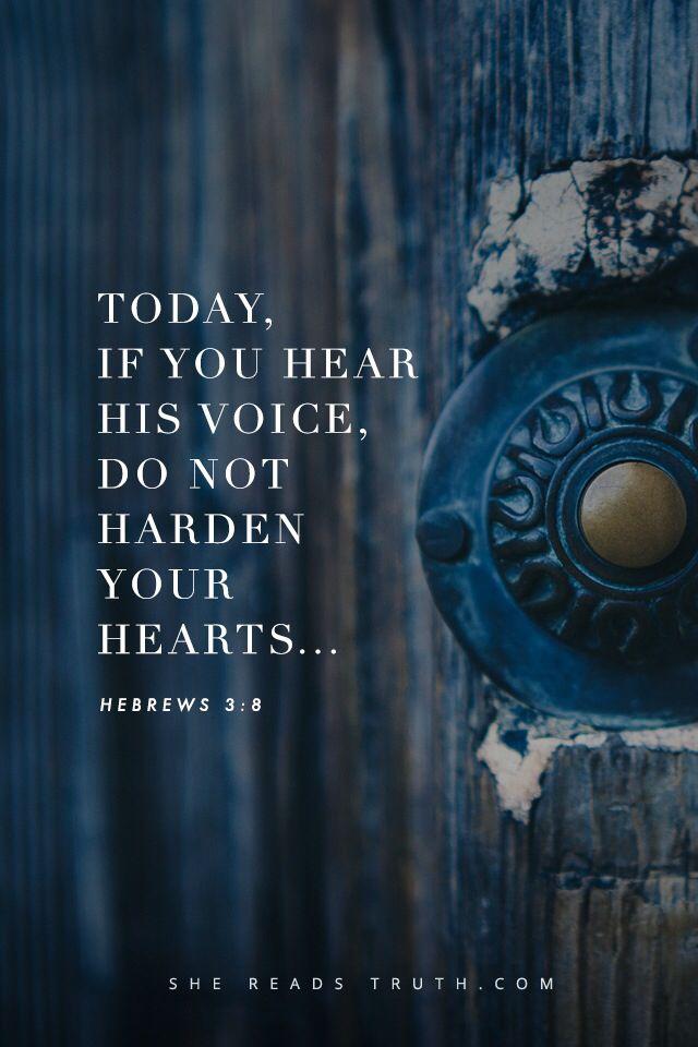 Hebrews 3:8