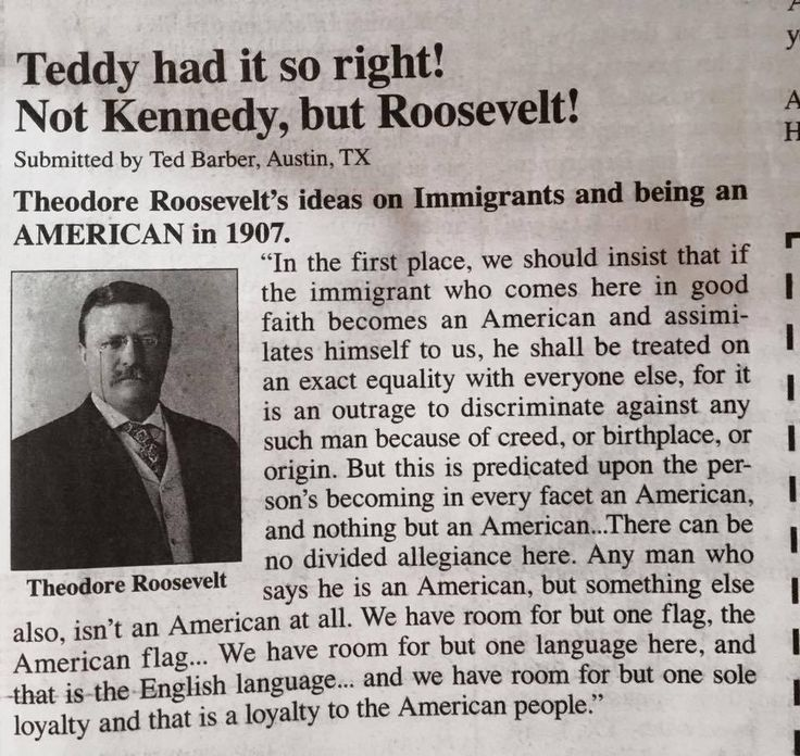 Snoped it ~ it's accruate and true!  Theodore Roosevelt's ideas on Immigrants and being an AMERICAN in 1907.
