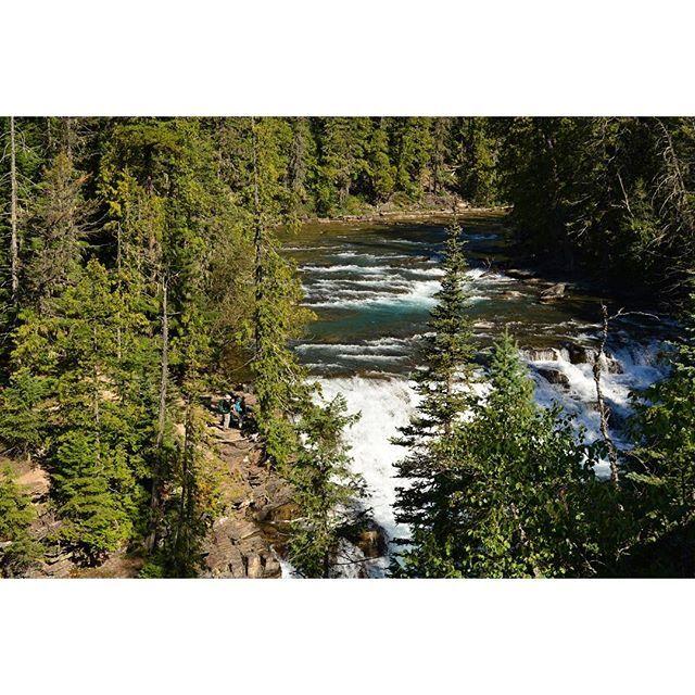 【kikuchiriko】さんのInstagramをピンしています。 《. . 広い森、大きな川 . ハイカーのなんて小さなこと . . この後、1匹目のグリズリーを見つける🐻 . . #グレイシャー国立公園#glaciernationalpark##アメリカ#モンタナ#森#川#forest#rever#trekking#nature#夏休み#happyholidays#写真#photo#Nikon#東京カメラ部#tokyocameraclub#写真好きな人と繋がりたい#ig#igers#igersjp#IGersJP#mountaintrail#mountainlovers#outdoorphotography#outdoorlife#naturelovers》