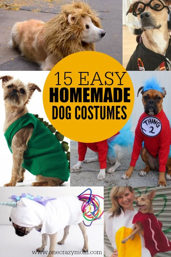 Homemade Dog Costumes 15 Diy Costumes For Your Dog Diy Dog