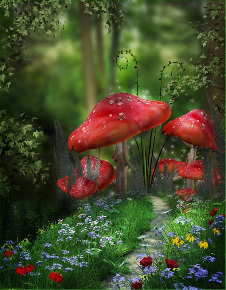 Red mushrooms in a magical forest