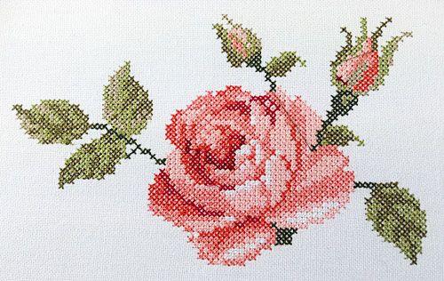 Kreuzstich Rose …