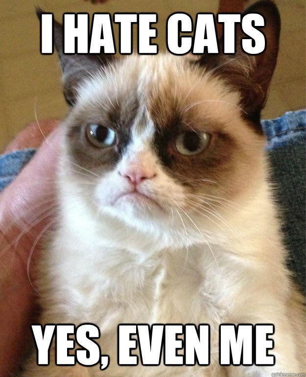 i hate cats yes even me - Grumpy Cat