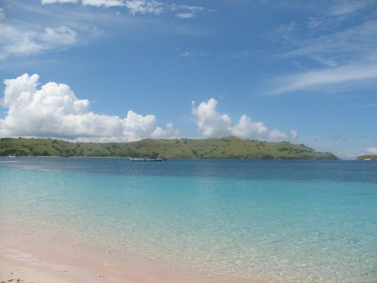 Surga dunia. Pink Beach, Pulau Komodo, Flores
