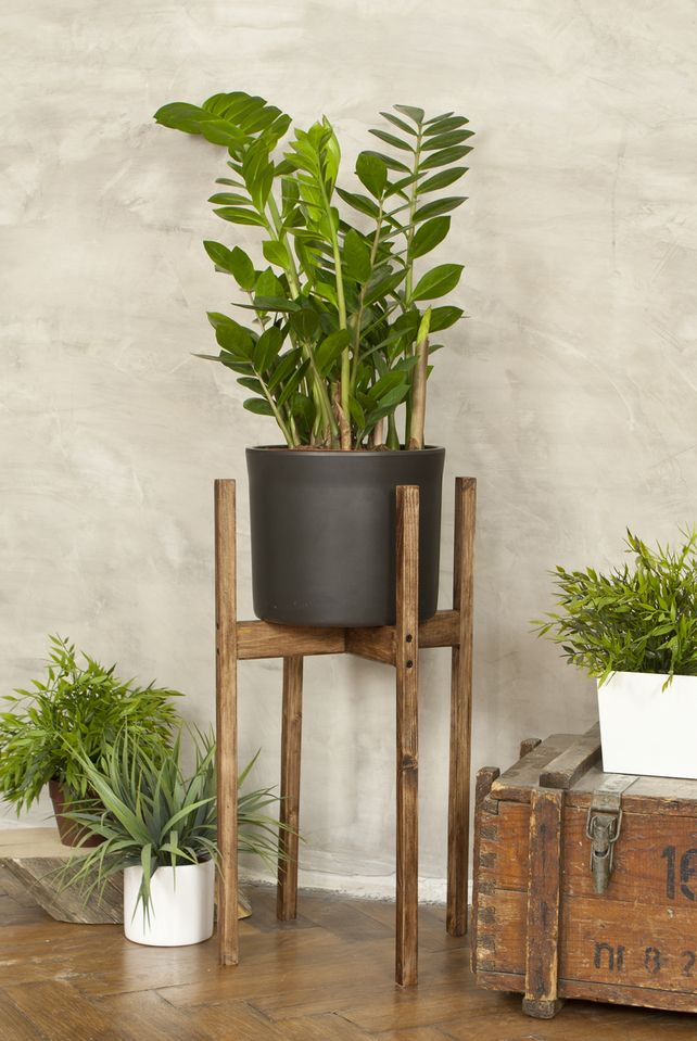 Rustic Wooden Plant Display Stand 76cm Tall Indoor Side