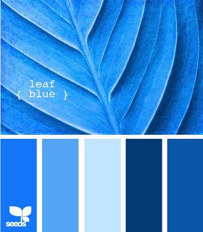 Blue Paint Swatches 236 best color pallettes images on pinterest | colors, colour