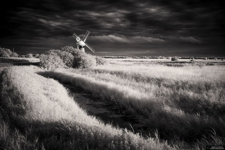 Some lovely light at Ludham in the Norfolk Broads yesterday evening, this is looking towards St Benet's Mill.  (C) Martin Birks. Please do not use without my permission.  www.martinbirksphotography.co.uk
