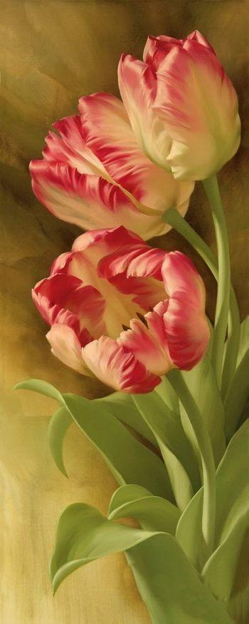 Igor Levashov tulips