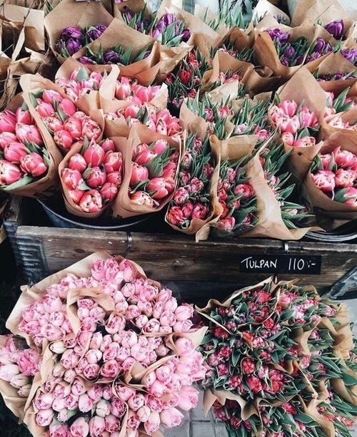 discovered via pinterest @appellesapothecary www.appelles.com