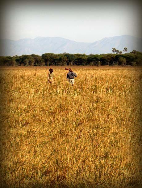 Walking safaris in Africa www.lederlesafaris.com
