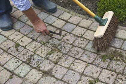 Tuinkalender februari: wat te doen in de tuin | vtwonen