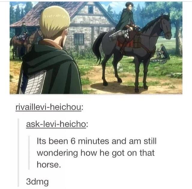 attack on titan funny | Via Merodii Tachibana also I am comparing him to Napoleon.