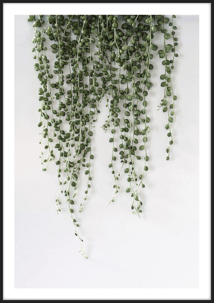 Green Pearls, från Insplendor tryckt med Giclée Fine Art Print-teknik