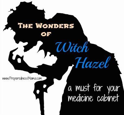 The Wonders of Witch Hazel for your Medicine Cabinet | PreparednessMama