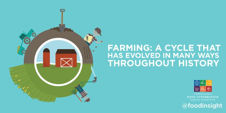 food production from farm to plate - Google Search