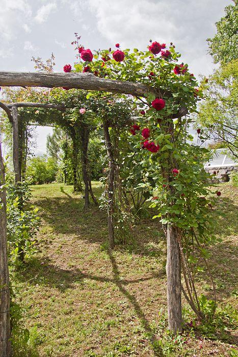 Soluzioni :: Il fascino del legno in giardino mediterranean garden, roses wooden pergola