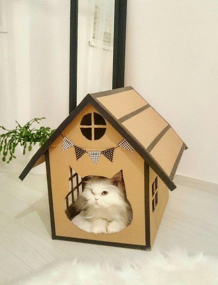 Kartondobozból cicaház  Cardboard box kitty house, home! Mywork!